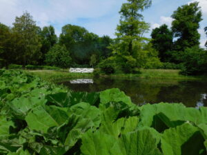 SE Brücke im Garten