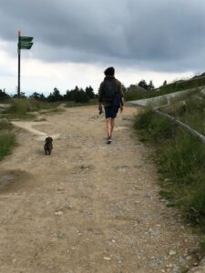 Reiseblog - Harz- Wanderer 3