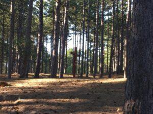 Reiseblog einsames Kreuz im Kiefernwald