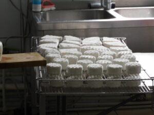 Reiseblog - Lettland - Käsefabrik