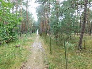 Reiseblog Russland Grenzzaun