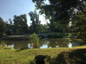 Reiseblog - Schloss Tarce - Park 4