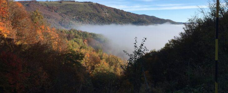 Herbstwald Apenninen