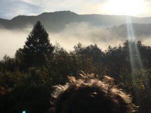 Lotte schaut sich die Wolken im Tal an
