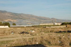 In der kargen Landschaft stehen im Hintergrund riesige Gewächshäuser. Die Brachfläche im Vordergrund ist voller Müll.