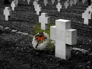 Kranz neben Soldatengrab