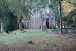 Reiseblog: Kapelle im Wald