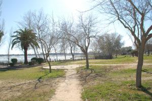 kleiner Park an der Lagune