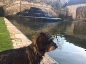 Lotte steht vor dem Forellenteich des Klosters