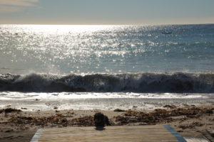 Lotte steht im Sand vor dem Meer . Eine Welle rauscht von hinten an, die Sonne spiegelt sich im Meer.