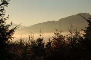 Reiseblog: Nebel im Tal 1