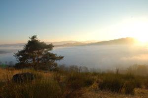Reiseblog: Nebel im Tal 2