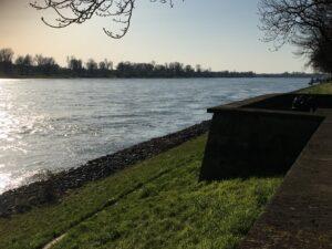 Der Rhein an der Theodor-Heuss-Brücke