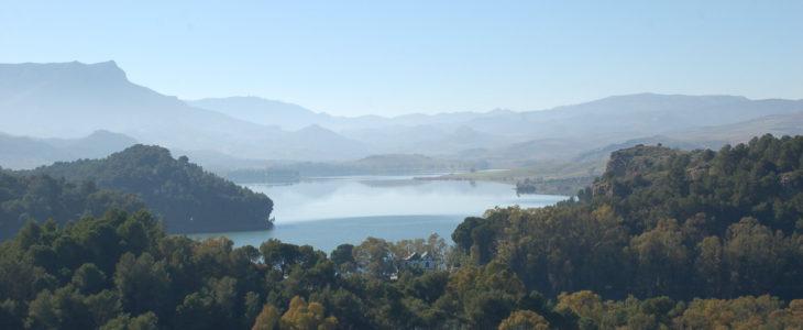 Blick auf den Stausee Guadalhorce im Vordergrund ein Pinienwald