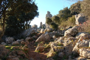 ausgewaschene Kalksteine