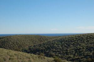 Blick über Hügel einer kargen Landschaft mit niedrigem Bewuchs, im Hintergrund das Meer